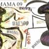 mama09-017